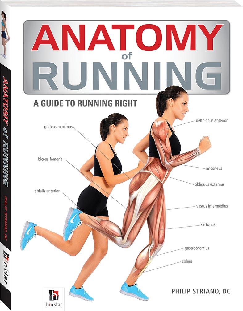 Anatomy of running