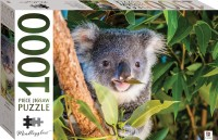 Mindbogglers: Koala, Australia