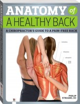 Anatomy of a Healthy Back